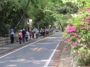 寒川神社参道を歩く